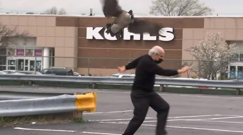 美國一隻加拿大黑雁俯衝攻擊靠近鳥巢的人類。(翻攝自YouTube @Eyewitness News ABC7NY)
