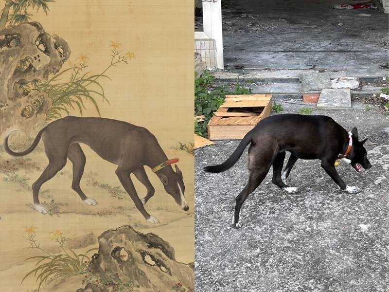 網友發現「墨玉螭」(左)與「春嬌」(右)長得非常雷同。(左圖取自「故宮」、右圖取自「PTT」,本報合成)
