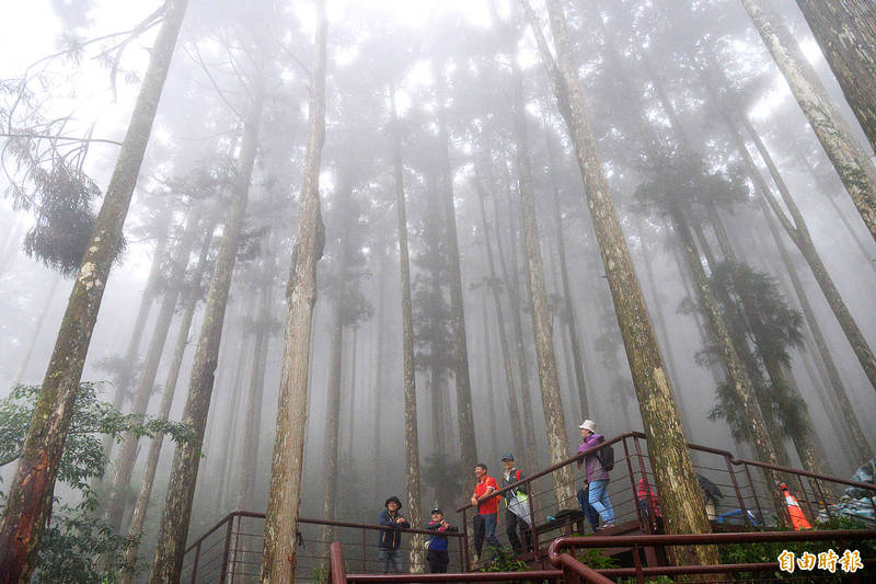 People stand on a walkway in the Tengjhih National Forest Recreation Area in Kaohsiung's Taoyuan District yesterday. Photo: Hsu Li-chuen, Taipei Times