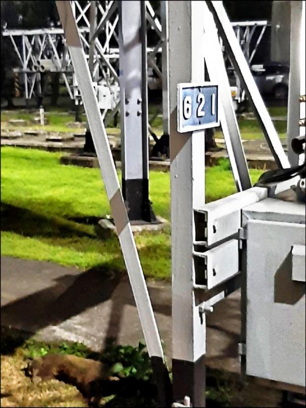 桃園市前天深夜無預警大停電,台電調查發現是一隻白鼻心闖入碰觸開關設備,導致跳電。(台電提供)