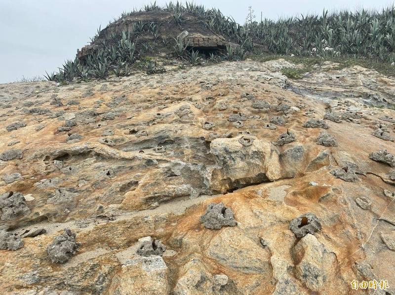 金門北海岸寒舍花據點附近的碉堡,還保有一些早年防止敵人來犯的阻絕「利器」。(記者吳正庭攝)