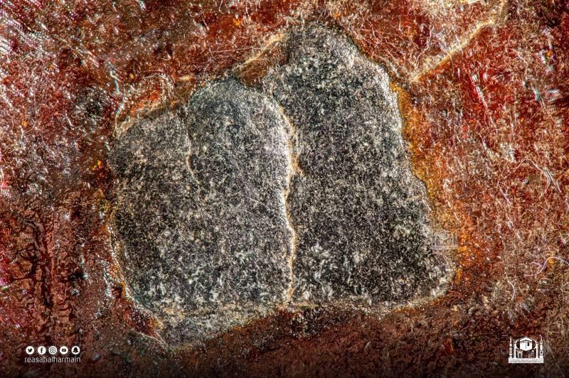 黑石的照片拍攝使用了焦點堆疊(Focus stacking)的技術,以達到最高的解析度。(圖翻攝自ReasahAlharmain官方推特)