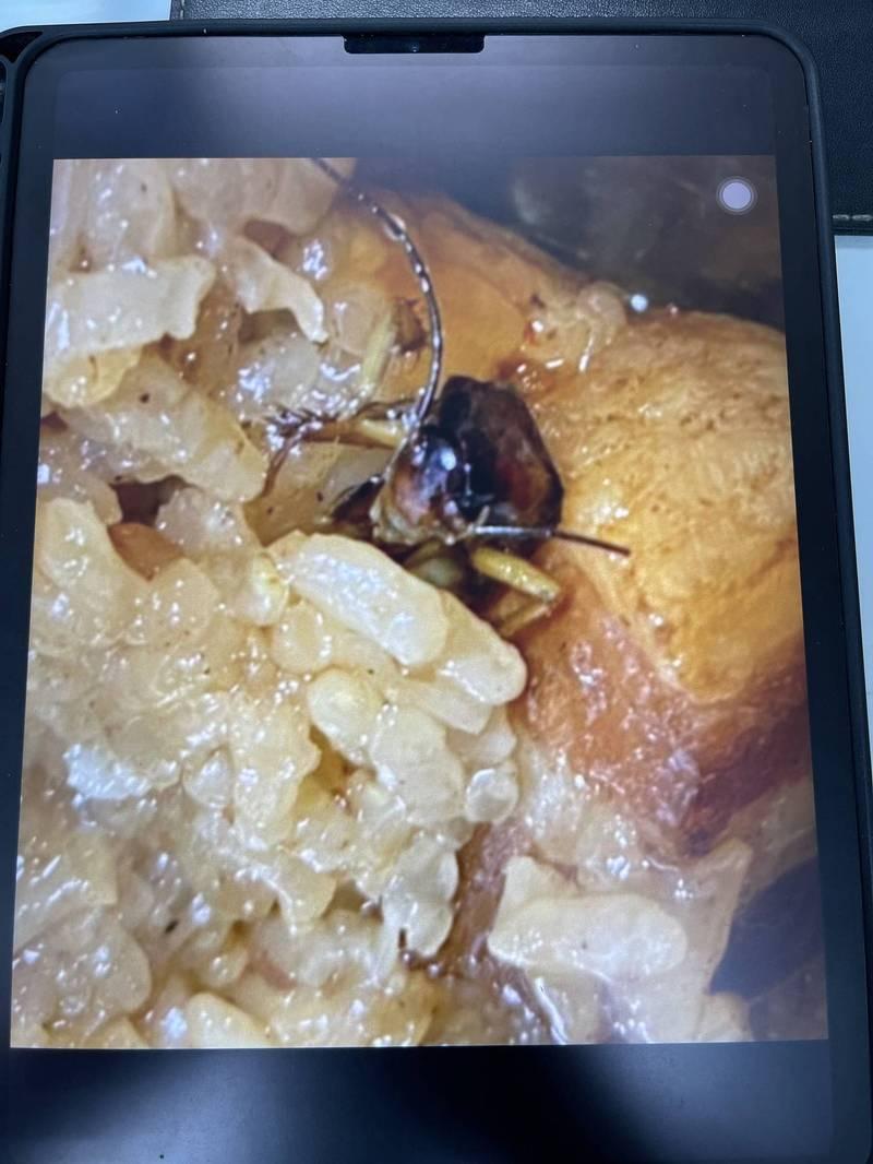 學生午餐粽子中有蟑螂。(廖宜琨服務處提供)