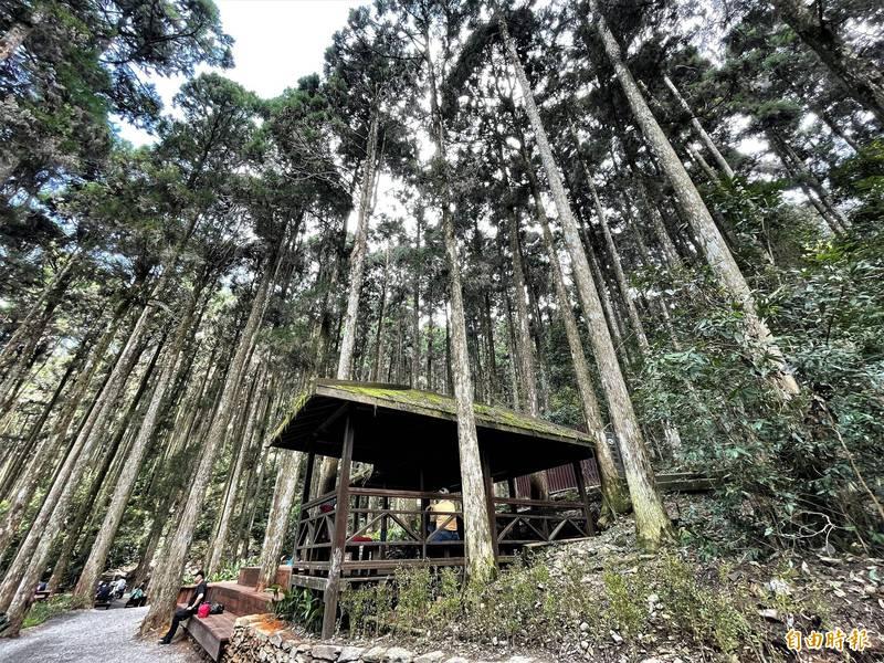 位於高雄市桃源區的藤枝國家森林遊樂區今(7日)在遊客的驚喜中熱鬧開園,不過桃源人卻發出聲音,呼籲「在地人參與、資源共享」以共創雙贏。(記者許麗娟攝)