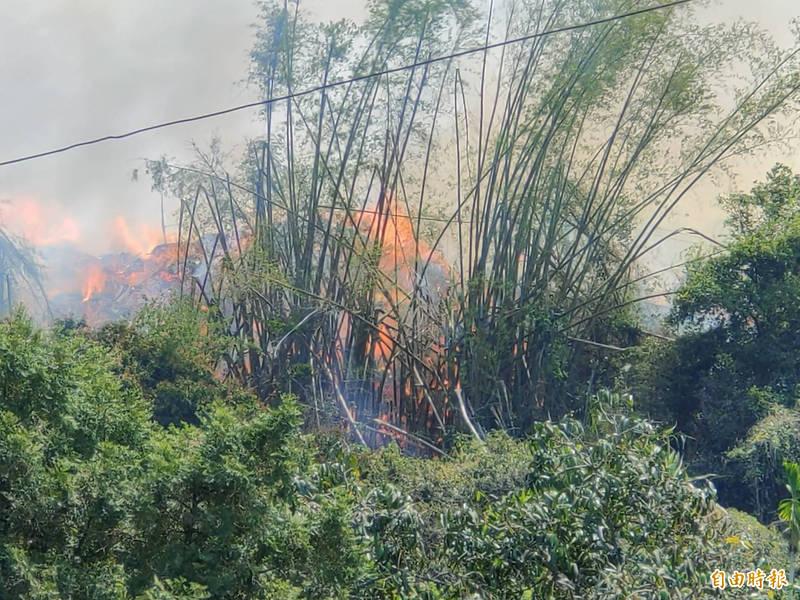 草屯鎮知名九九峰下方的「下平林」今天上午火燒山,紅紅火光怵目驚心。(記者陳鳳麗攝)