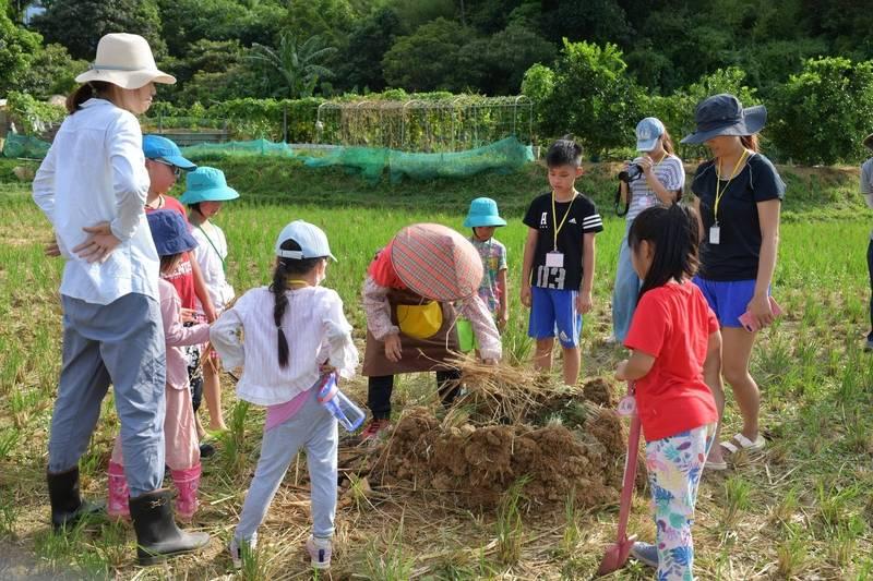 食農教育除了種植蔬果,還有田間焢窯體驗。(新北市農業局提供)