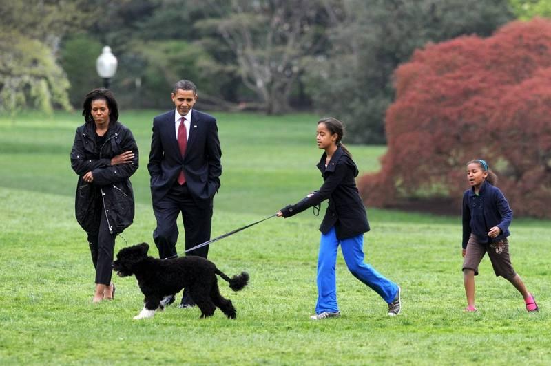 美國前總統歐巴馬的愛犬阿博(Bo)病逝。圖為2009年時的歐巴馬夫婦,看著女兒和阿博在白宮草皮上嬉戲。(歐新社)