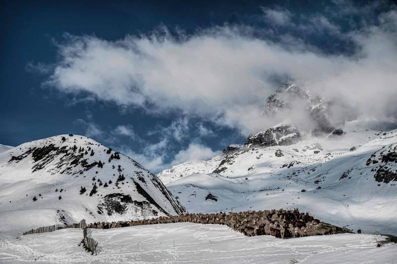 位於法國東南部薩瓦省的阿爾卑斯山區8日驚傳發生2起雪崩,目前傳出至少造成7人死亡,包含上週一發生的雪崩,總計已造成12人死亡。(法新社)