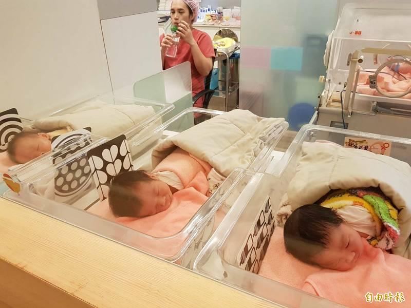 台灣出生率持續低迷,行政院祭出少子女化對策,新北市議員江怡臻爭取市府加碼補助試管嬰兒療程與凍卵。(記者賴筱桐攝)
