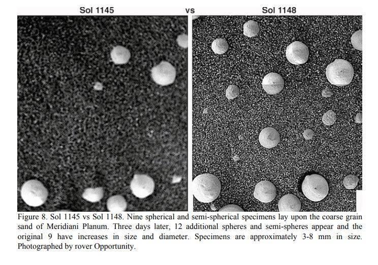 法國、美國和中國科學家的共同研究指出,同一組機會號在同一拍攝地點中,「白色球狀物」從原本的9顆微幅增加至12顆,他們認為這是「生物現象」,而非赤鐵礦。(圖翻攝自《Advances in Microbiology》雜誌)。