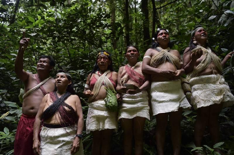 亞馬遜雨林原住民亞諾馬米人遭襲擊事件頻傳,健康狀況也備受威脅。(法新社)
