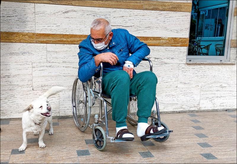 聖特爾克出院後和愛犬邦庫克感人重逢。(美聯社檔案照)