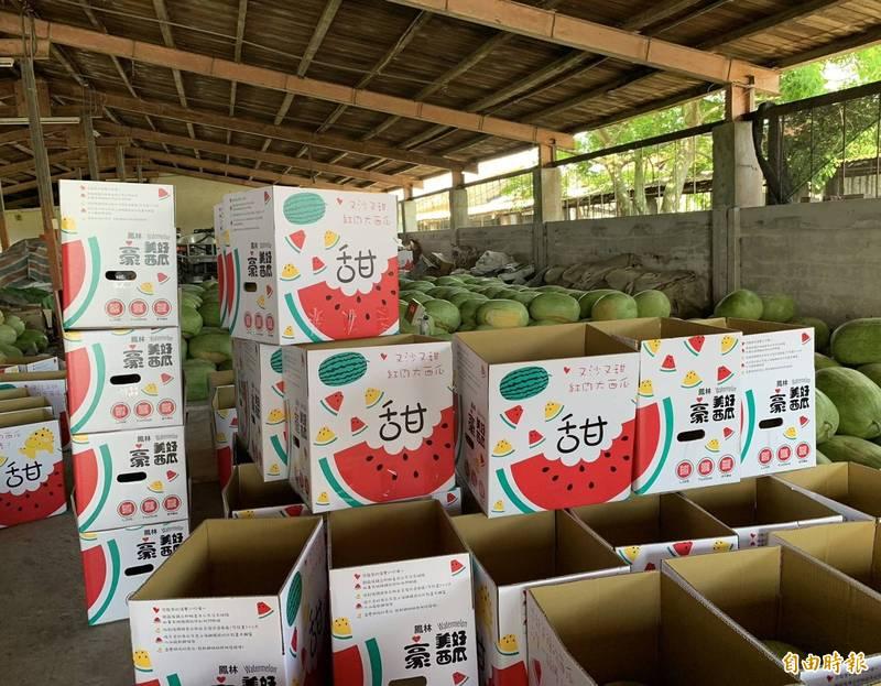 花蓮西瓜農陸續將採收好的西瓜裝箱宅配至外縣市。(記者王峻祺攝)