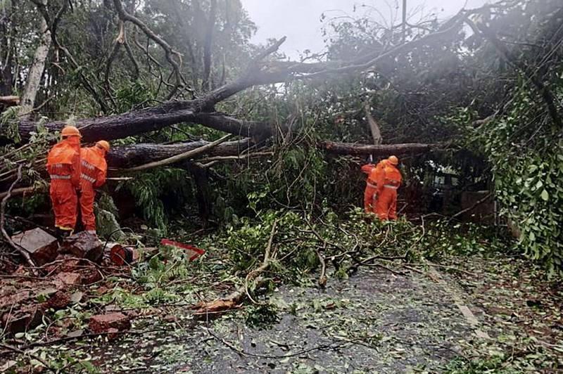 印度氣象局表示,「陶特」可能在24小時內發展成「特強氣旋」。圖為「陶特」造成路樹傾倒。(法新社)