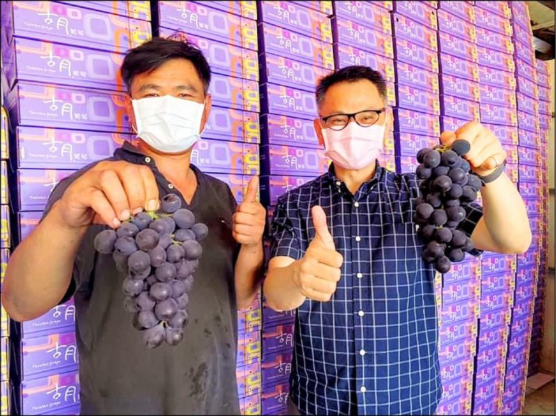 埔心鄉長張乘瑜(右)說「葡萄是無辜」,今年葡萄「么壽甜」,希望大家多消費。(張乘瑜提供)