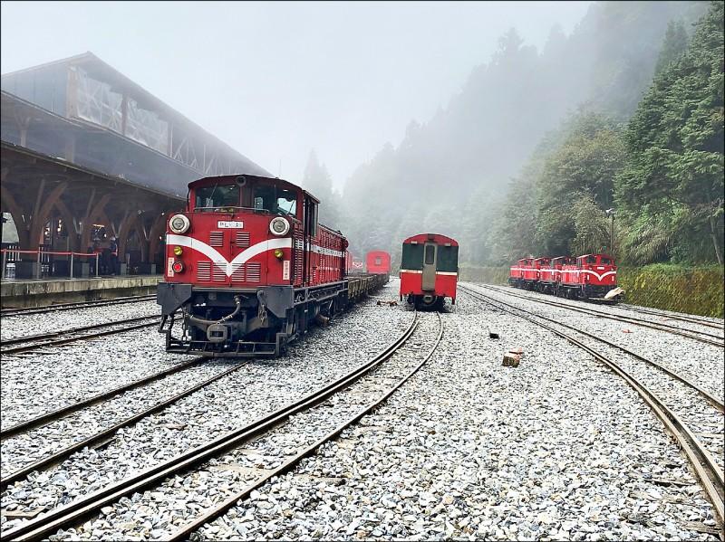 因應疫情升溫,阿里山林業鐵路5月18日到28日暫停營運。(阿里山林鐵及文資管理處提供)