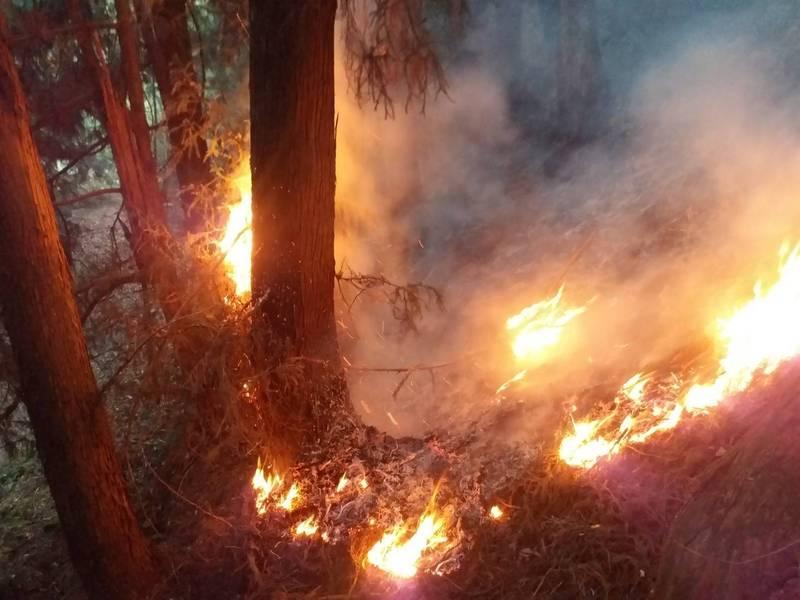 東勢林區管理處位於馬崙山的八仙山事業區102林班森林火災延燒5天。(圖由東勢林管處提供)