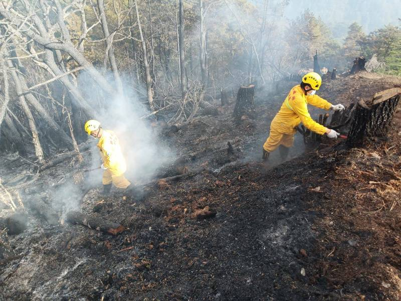 八通關杜鵑營大森林大火進入控制階段,森林護管員持續觀測火勢、處理殘火。(圖由嘉義林管處提供)