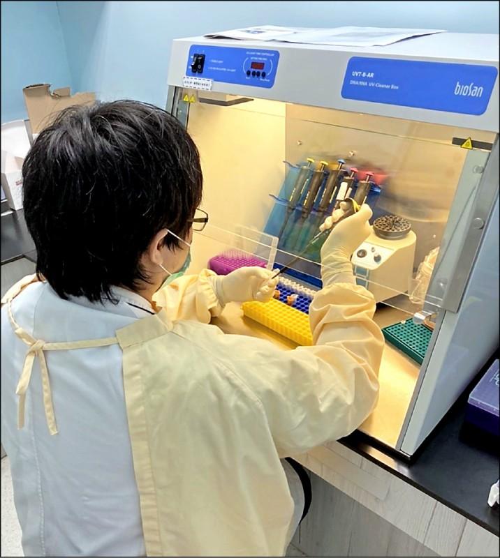 台灣近日武漢肺炎疫情嚴峻,亞大醫院檢驗科等待檢驗的檢體爆量,醫檢師每天都要辛苦加班檢驗。(記者陳建志翻攝)