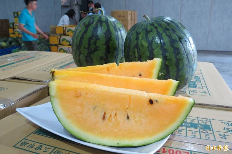 有網友在論壇上分享,西瓜加上韭菜一起食用可能會導致腹瀉。西瓜示意圖。(資料照)