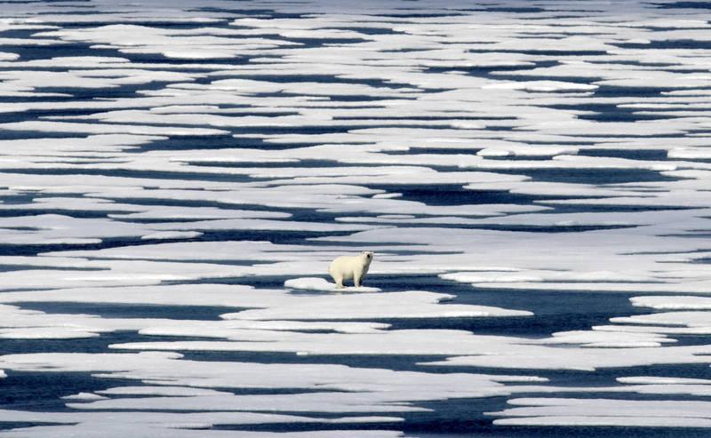全球暖化造成北極融冰加速。(美聯社檔案照)