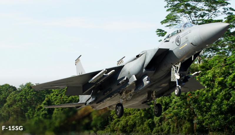 新加坡空军F-15SG战机。(图翻摄自新加坡空军官网)(photo:LTN)