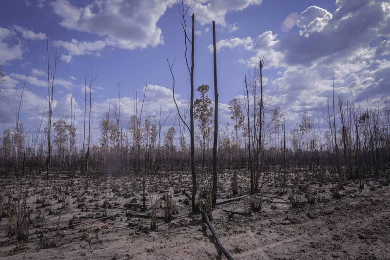 巴西面臨91年來最嚴重乾旱,氣象機構已針對中部與南部地區發布6至9月旱災緊急警報。巴西乾旱示意圖。(彭博)