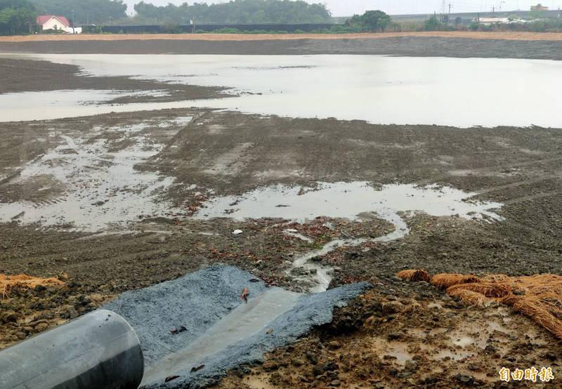 梅雨來了,台南知名百年古刹六甲赤山龍湖巖前的8公頃大水塘已有開始少量進水。(記者楊金城攝)