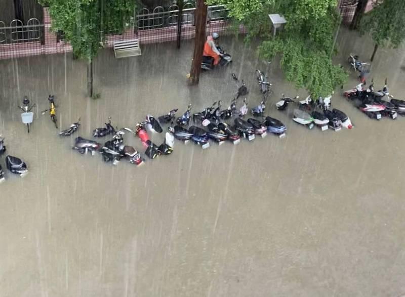暴雨讓他撈到魚! 地點在台北信義區…