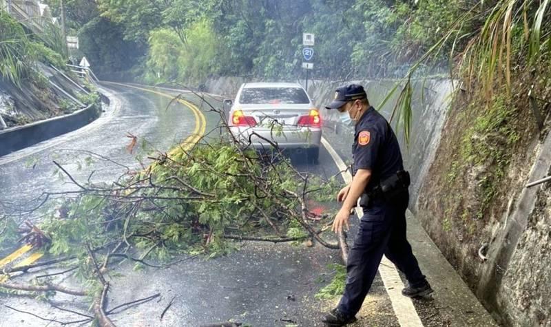 南投縣信義鄉新中橫公路因雨頻傳路樹倒塌意外,員警前往排除交通狀況。(圖由信義分局提供)