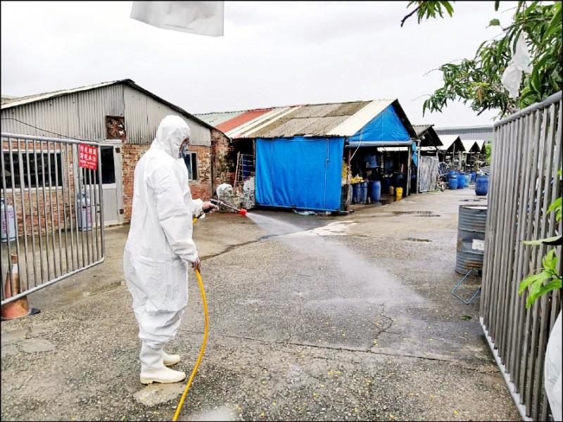 台南市出現今年首例日本腦炎病例,衛生局派員前往個案住家及附近養豬場進行環境清消。(南市衛生局提供)