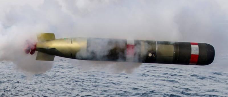錘頭鯊水雷的攻擊模組,預定採用雷神公司製造的Mk54鯖鯊(MAKO)輕型魚雷。(圖取自雷神公司官網)