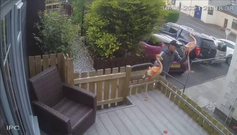 英國一名男子喝醉酒後,竟跑去別的屋主家門前偷走一尊紅鶴雕像,獵奇舉動吸引8.2萬網友觀看。(圖翻攝自Fife jammer locations臉書)