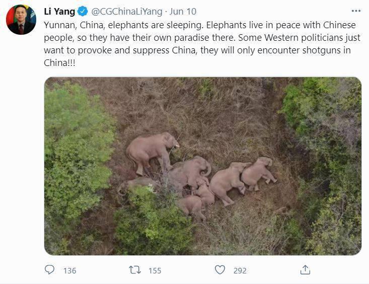 中國駐巴西里約熱內盧大使李陽在推特PO文,引發大批網友罵爆。(圖擷取自李陽推特)