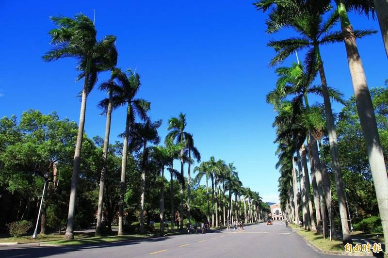 台灣大學。(資料照)