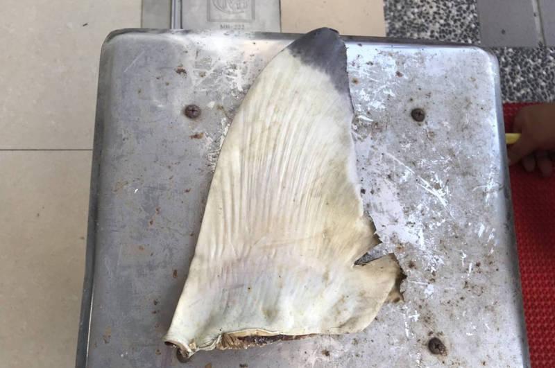 海巡署台南北門查緝隊今天凌晨查獲澎湖籍漁船涉嫌走私魚翅乾貨1423.4公斤,價值600萬元。(海巡署提供)