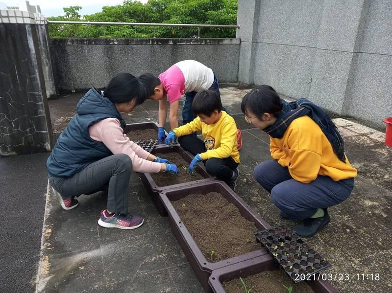 一心書苑學生在陽台種蔬菜。(廖修毅提供)