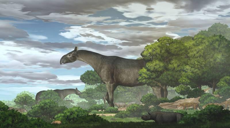 根據古生物學家公布的數據繪製的復原圖,可見其體型之巨大程度。(路透)