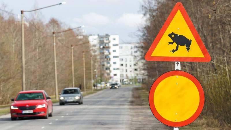 愛沙尼亞首都塔林一隅。(路透)