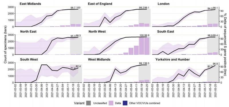 英國公共衛生部(PHE)發布的數據顯示,在新增確診病例中,多達95%的確診者都是感染了Delta病毒;除了西南地區外,各地99%以上的病例都是感染Delta變種病毒株。(圖擷自英國公共衛生部)