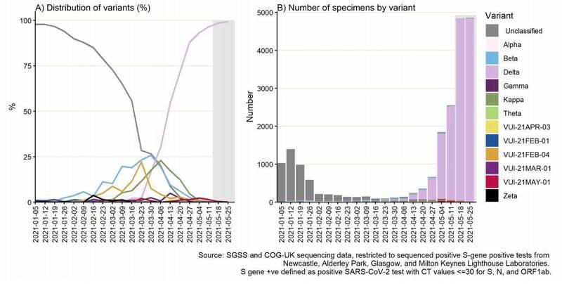 英國疫情因Delta變種病毒株(前稱印度變種病毒株)急速升溫,在Delta推波助瀾下確診人數不斷激增,最新統計指出,多數地區有高達99%的新增確診病例都是感染Delta病毒。(圖擷自英國公共衛生部)