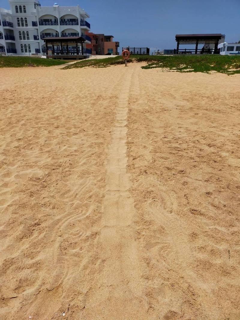 馬公山水沙灘爬痕,疑似沙灘摩托車的車痕。(民眾提供)