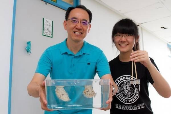 清大特聘教授焦傳金將借調出任國立自然科學博物館館長(左)。他與學生楊璨伊(右)曾經聯手,鎖定烏賊進行基礎研究,是全球首篇證實烏賊具有「數感」能力的研究。(清大提供)