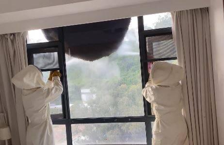 中國海南省當地1間住宅大樓外,驚見直徑1.5米的超大蜂窩。(圖取自微博)