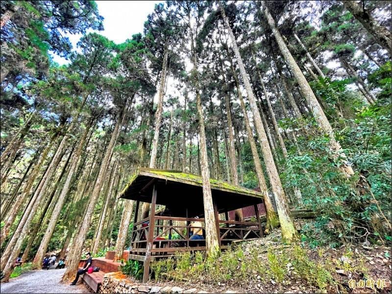 指揮中心表示,3級防疫警戒延長,但將鬆綁國家森林遊樂區等可開放,但區內的山屋仍不開放。(資料照)