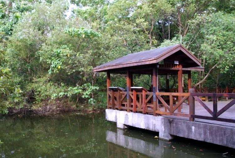 農委會特生中心位於戶外的生態教育園區是依多樣化生態系打造的,別具教育意義。(農委會特生中心提供)