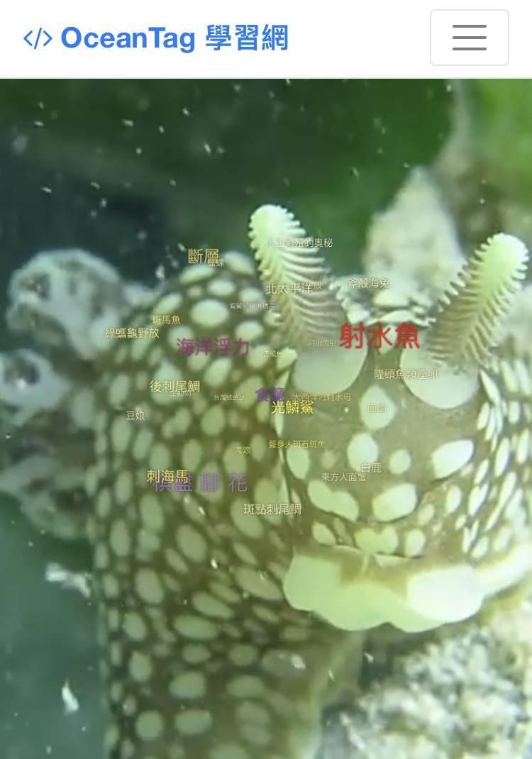 海生館建置「海洋知識平台「OceanTag智慧化海洋生物知識學習網站」。(取自官網)