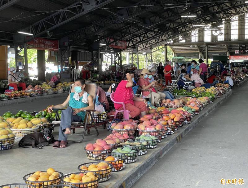 台南玉井青果市場今年因疫情關係,芒果產季時的遊客人潮銳減,近期中央流行疫情指揮中心宣布下週有條件的微解封,也讓果農、攤商期待觀光客的到來。(記者萬于甄攝)