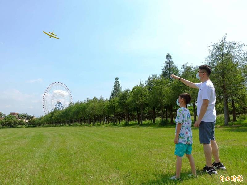 麗寶度假區夏日落羽松雖未變色,但翠綠景色,令人心曠神怡。(記者張軒哲攝)