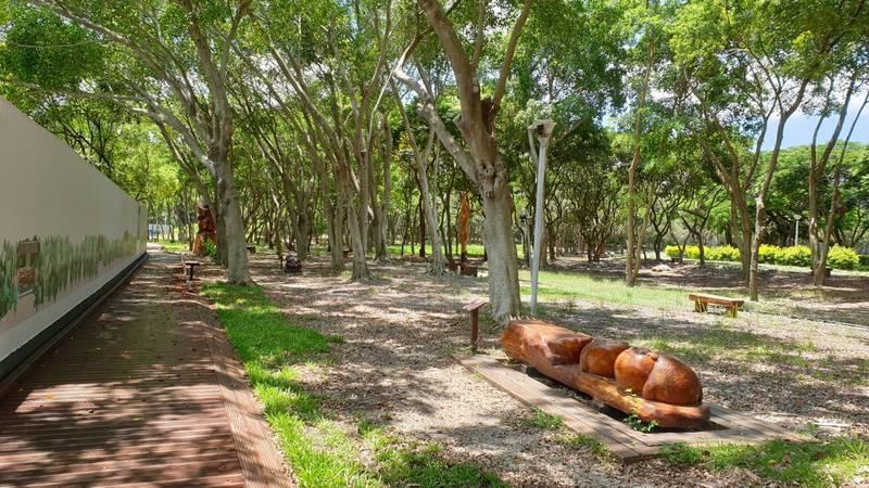 東勢林業文化園區經初步整理後,空間更為明亮、通透。(圖由東勢林管處提供)